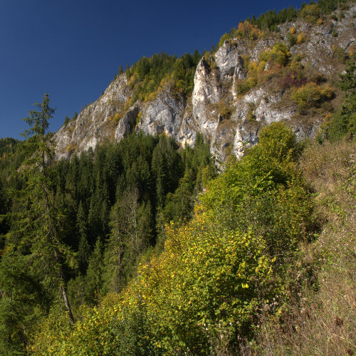 Cheile Arieșului Albac - cheie sălbatică cu panoramă superbă de sus de pe stânci. La 20 de kilometri de Arieșeni.