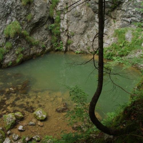 Poate cel mai frumos izbuc din România - Izbucul Tăuz. Situat lângă Casa de Piatră - Arieșeni.