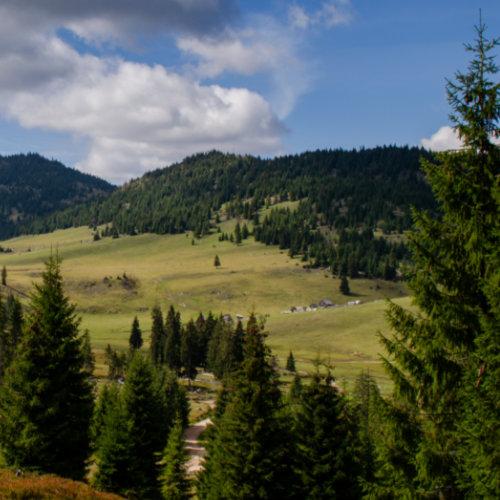 Poiana Călineasa - Gârda de sus - păstorit tradițional și peisaj asemănător cu cel din Padiș.