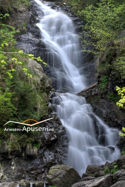 Cascada Pătrăhăițești - cădere de apă de 12 metri înălțime lângă satul Pătrăhăițești - Arieșeni.