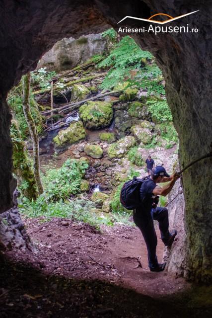 Cheile Galbenei - Munții Apuseni - cheie sălbatică într-o pădure de fag și conifere.
