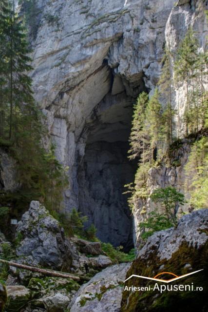 Portal Peștera Cetățile Ponorului - Padiș - Apuseni