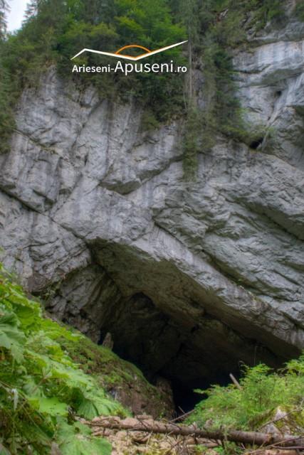 Portalul Peșterii Coiba Mare - sat Casa de Piatră - Arieșeni - județul Alba