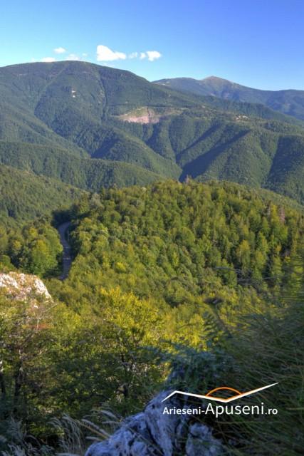 Vedere de pe Pietrele Negre - în depărtare se poate vedea Vârful Bihor.