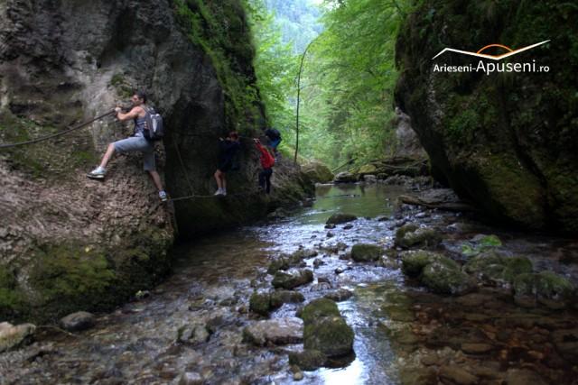 Parcul Natural Apuseni - Cheile Galbenei - obiectiv turistic accesibil din Arieșeni.