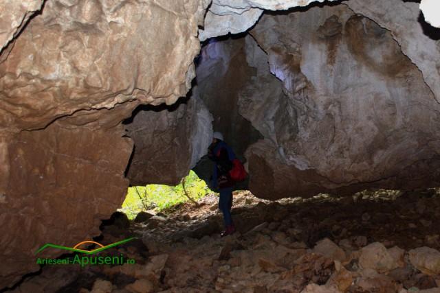 Obiectiv turistic Arieseni-Apuseni: Cotețul Dobreștilor