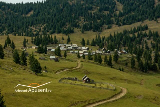 Un sat de mutături în Poiana Călineasa - Munții Apuseni -în comuna Gârda de sus