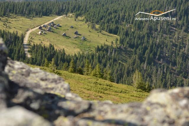 Vedere spre mutăturile de lângă Vârful Curcubăta Mică